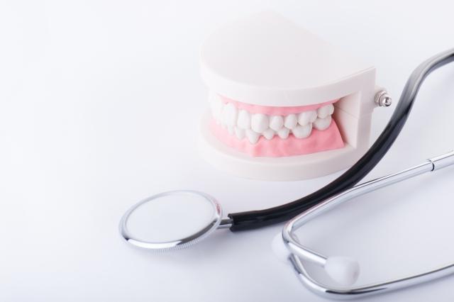 入れ歯治療 武蔵新城の藤木歯科クリニック